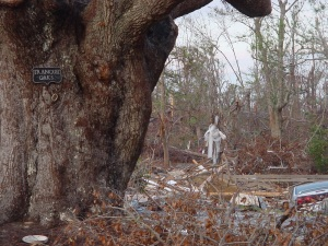 "Katrina 11 – Jon and I took a very heartbreaking drive down to Bay St Louis. The big oak has a sign that reads ""Tranquil Oaks"". Behind it is the remaining foundation of what used to be the home."